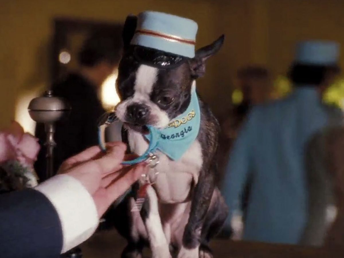 Hotel For Dogs Film Threat
