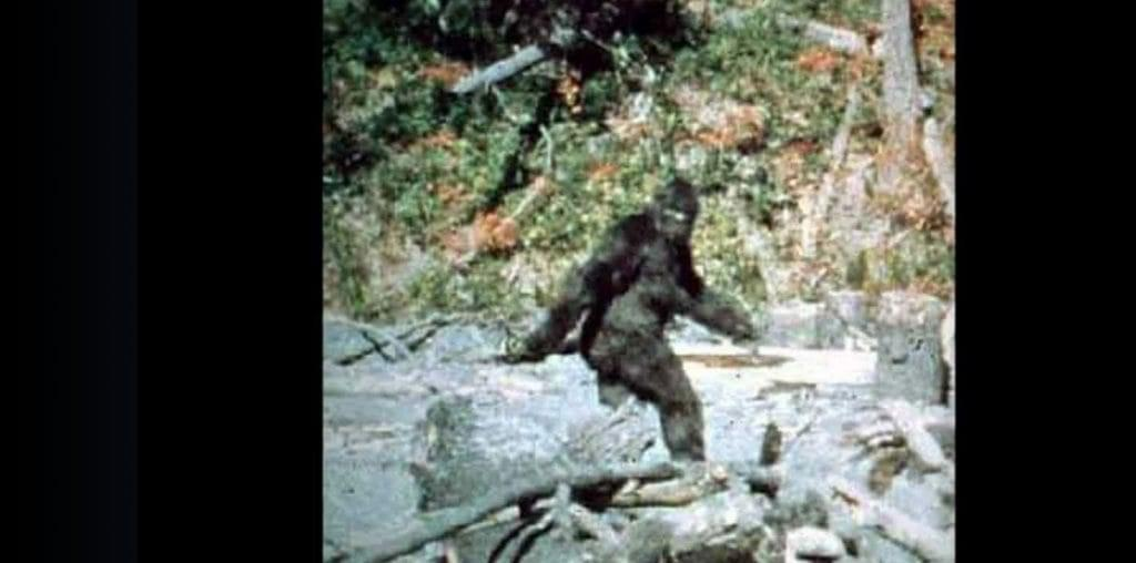 How the World First Met Bigfoot image