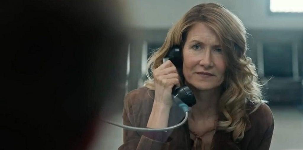 Laura Dern Talks Death Penalty Reform in Trial By Fire image