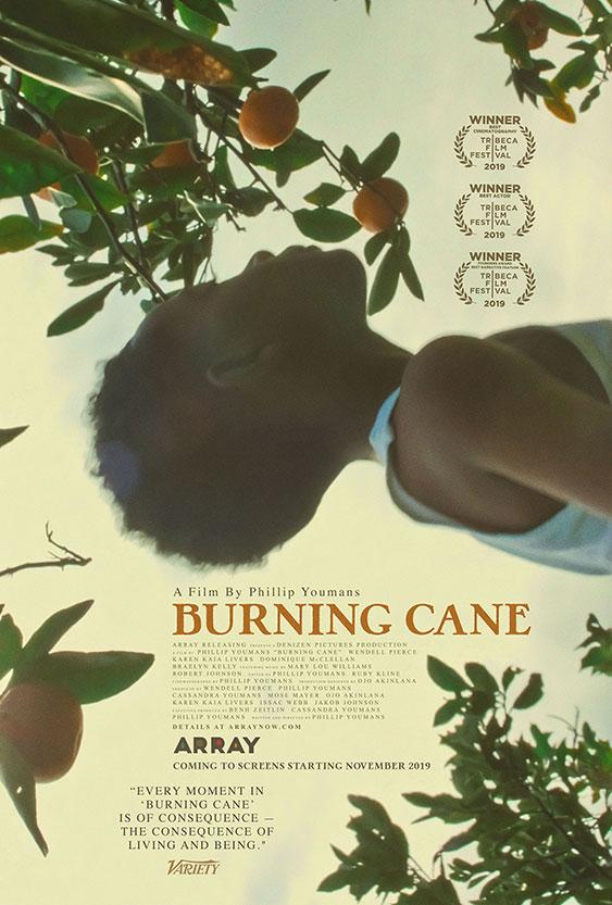 Burning Cane Image