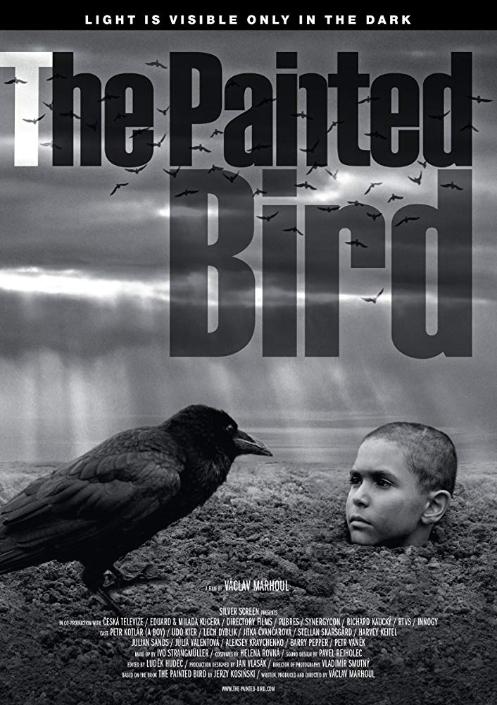 The Painted Bird Image