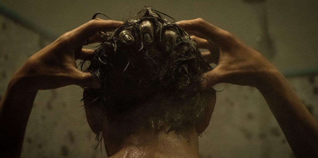 The Grudge image