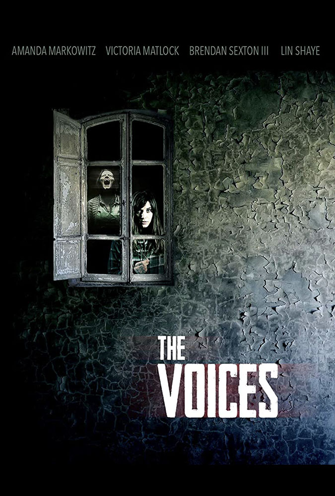 The Voices Image