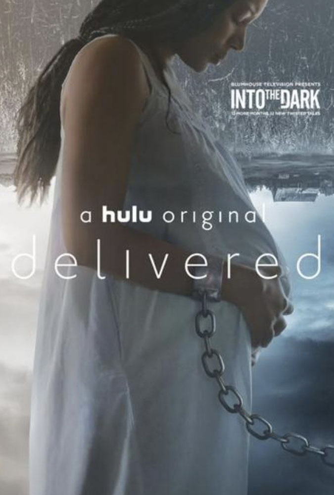 Into The Dark: Delivered Image