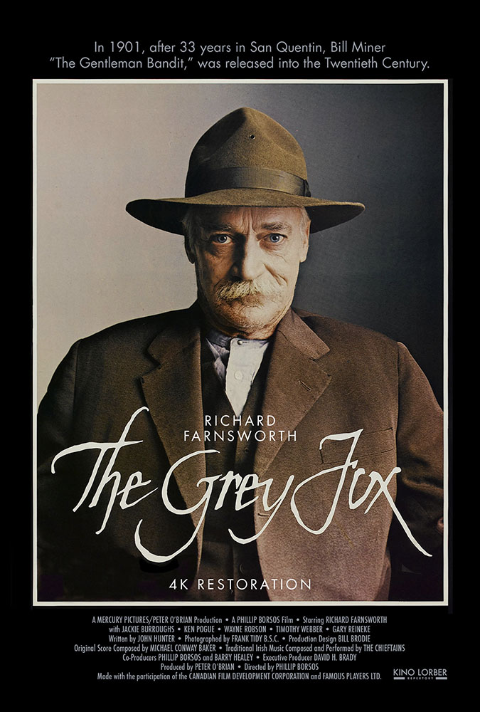 The Grey Fox Image