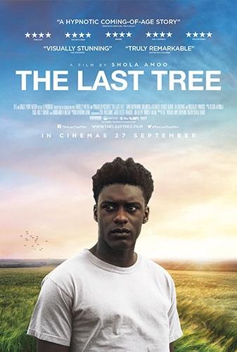 The Last Tree Image