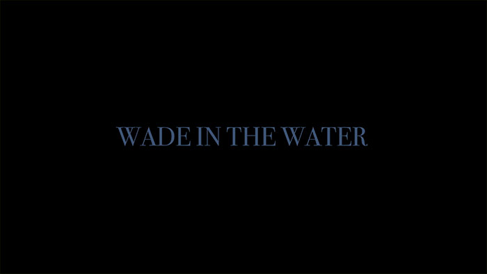 Wade In The Water Image