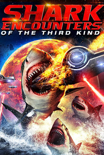 Shark Encounters Of The Third Kind Image
