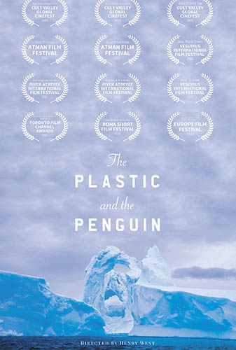 The Plastic & The Penguin Image
