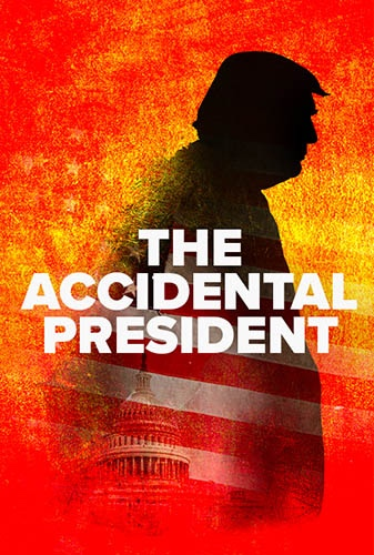 The Accidental President Image