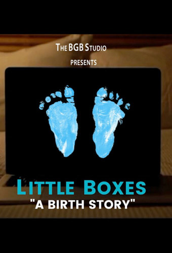 Little Boxes (A Birth Story) Image